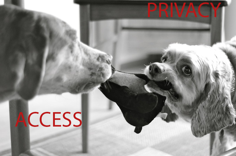 Access vs. privacy with dog tug of war